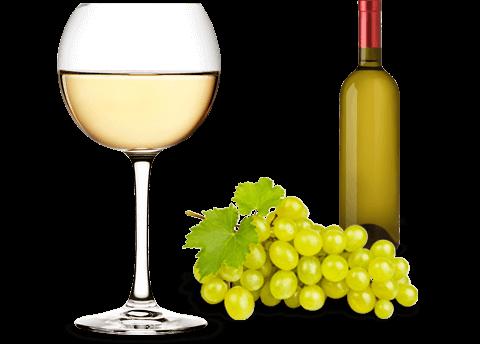 Pinot Bianco Veneto